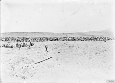 The Battle of Megiddo, September 1918: a distant view of a mass of Turkish prisoners on the plain of Esdraelon after the battle of Megiddo. © IWM (Q 12348)