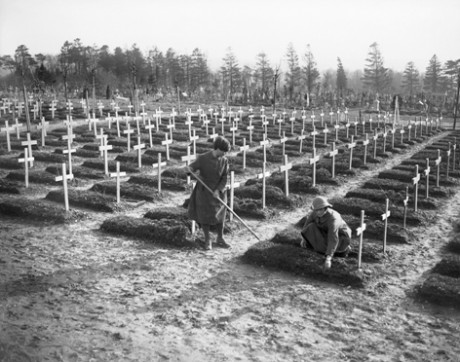 Members of the Women's Auxiliary Army Corps (WAAC) tend graves in Abbeville in France in February 1918. Q 8467
